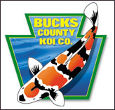 Professional Logo Design for Bucks County Koi Co.